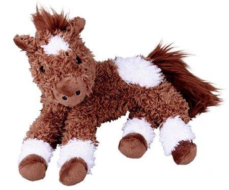 Konik Pony Paco Koń mój przyjaciel